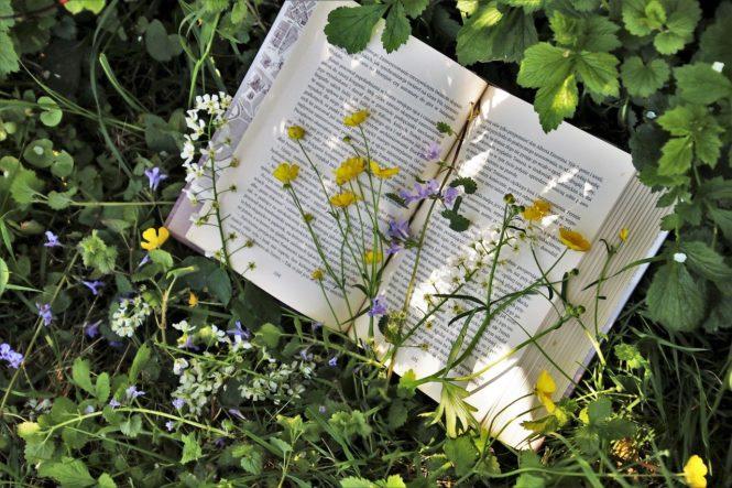 Livre recouvert de fleurs Image par pasja1000 de Pixabay